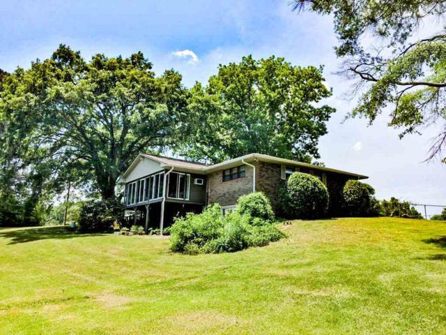 1150 County Road 167, Leesburg, AL 35983 (MLS #1099947) :: Weiss Lake Realty & Appraisals