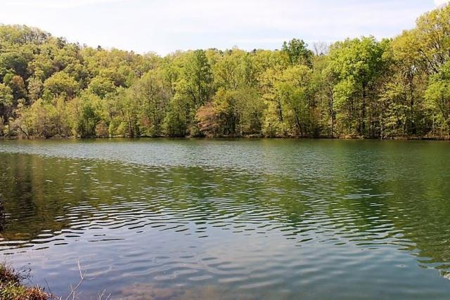 County Road 243, Cedar Bluff, AL 35959 (MLS #1100356) :: Weiss Lake Realty & Appraisals
