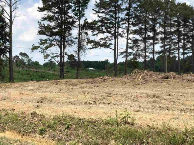 2980 County Road 1428, Vinemont, AL 35179 (MLS #1100559) :: The Pugh Group RE/MAX Alliance