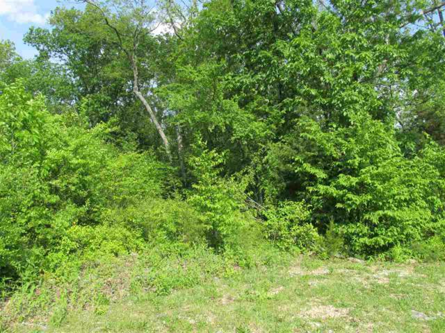 4012 Hawks Way, Huntsville, AL 35801 (MLS #1100589) :: Intero Real Estate Services Huntsville