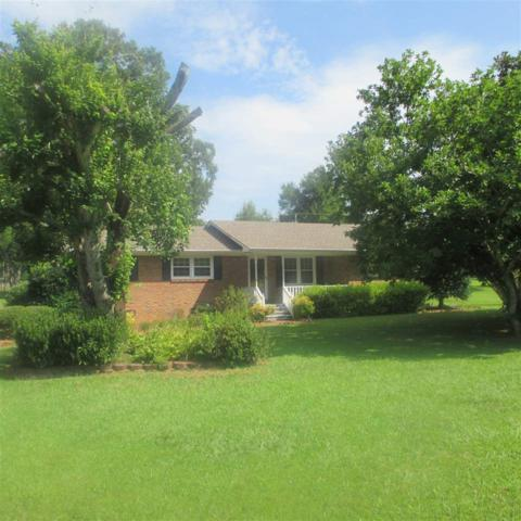 170 Stevens Street, Lexington, AL 35648 (MLS #1100614) :: The Pugh Group RE/MAX Alliance
