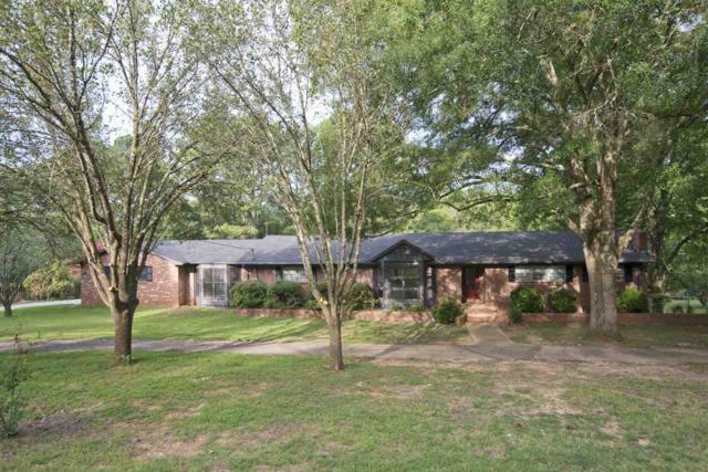 356 Williams And Broad Drive, Brownsboro, AL 35741 (MLS #1100816) :: RE/MAX Distinctive | Lowrey Team