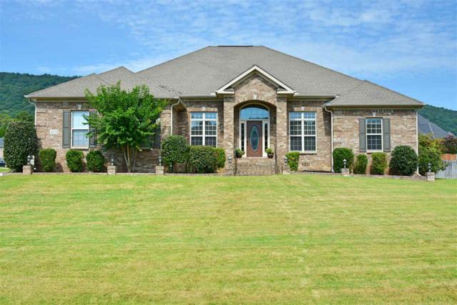 4503 Tree Ridge Circle, Owens Cross Roads, AL 35763 (MLS #1100849) :: Amanda Howard Sotheby's International Realty