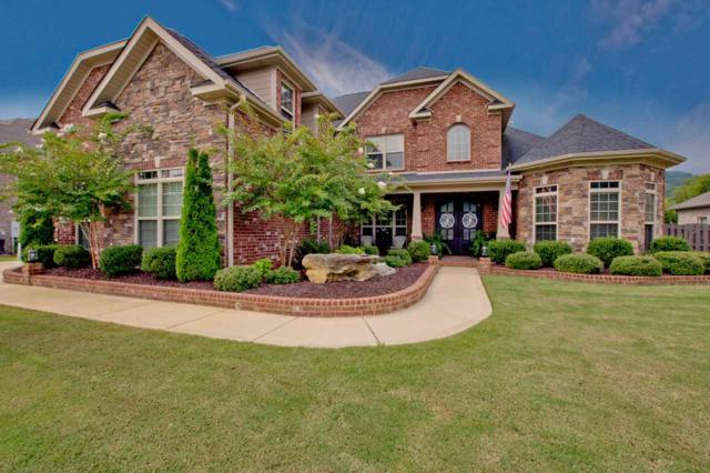 54 Summerlyn Way, Huntsville, AL 35748 (MLS #1100973) :: Legend Realty