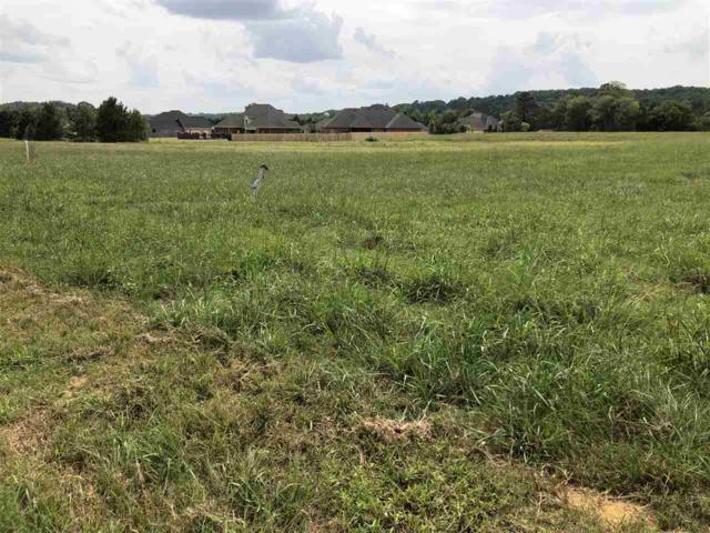 3421 South Chapel Hill Road Lot 1, Decatur, AL 35603 (MLS #1101210) :: Capstone Realty