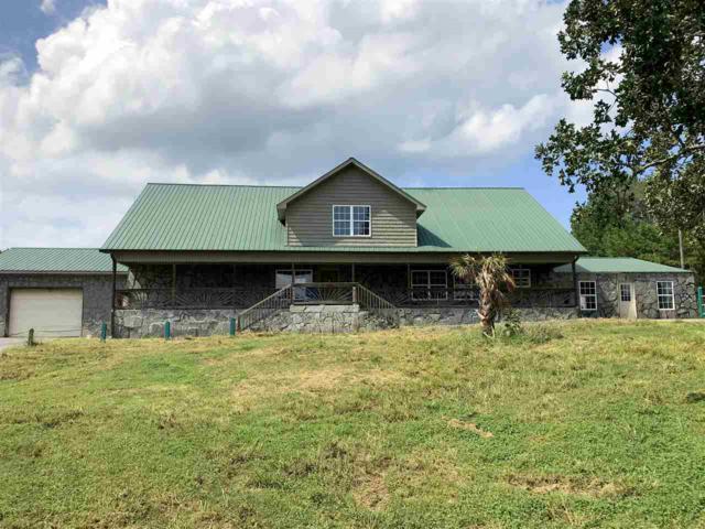 2533 Alabama Hwy 273, Leesburg, AL 35983 (MLS #1102052) :: Weiss Lake Realty & Appraisals