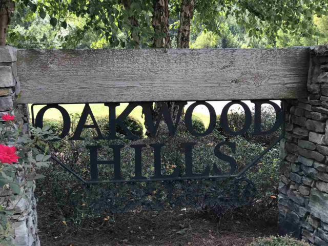 White Owl Drive, Ashville, AL 35953 (MLS #1102196) :: Legend Realty