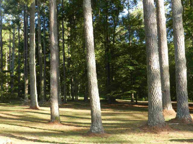 6 Mills Circle, Brownsboro, AL 35741 (MLS #1102499) :: Capstone Realty