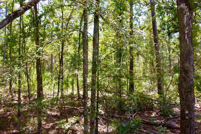 A County Road 380, Centre, AL 35960 (MLS #1103187) :: Capstone Realty
