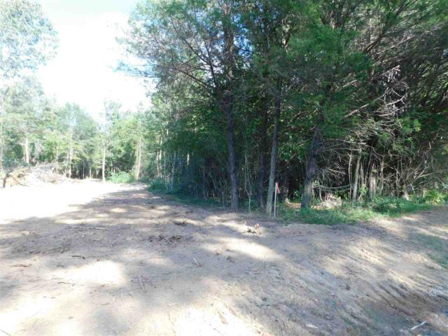 0 Old Six Mile Road, Somerville, AL 35670 (MLS #1103264) :: RE/MAX Distinctive | Lowrey Team
