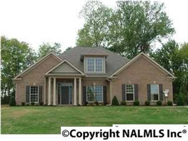 110 Crystal Springs Drive, Madison, AL 35757 (MLS #1103277) :: RE/MAX Alliance