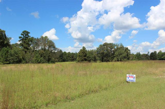 3155 County Road 114, Valley Head, AL 35989 (MLS #1103372) :: The Pugh Group RE/MAX Alliance