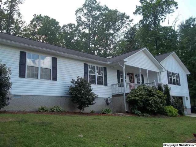 2250 Hickory Hill Drive, Guntersville, AL 35976 (MLS #1103376) :: RE/MAX Distinctive | Lowrey Team