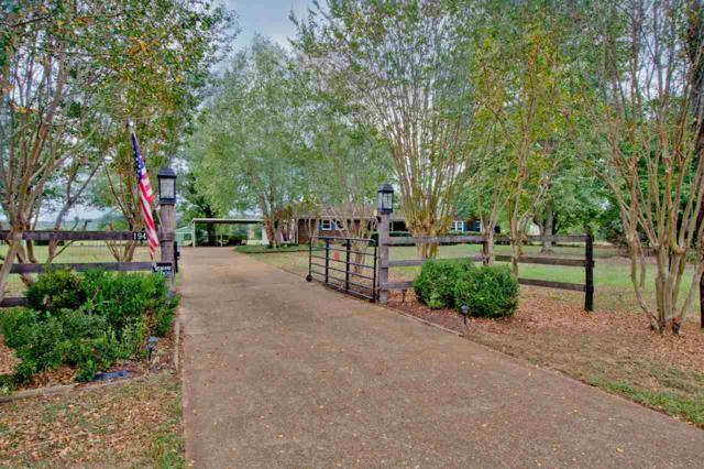 1942 Carters Gin Road, Toney, AL 35773 (MLS #1103395) :: RE/MAX Alliance
