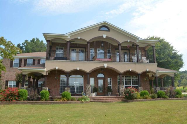 41 Douglas Drive, Guntersville, AL 35976 (MLS #1103811) :: Capstone Realty
