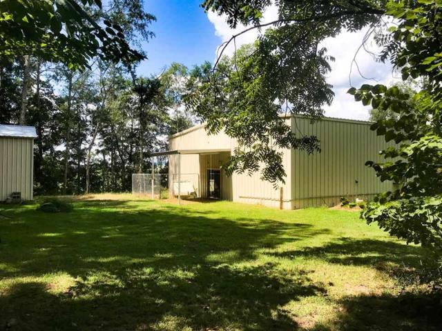 310 Holman Street, Leesburg, AL 35983 (MLS #1103823) :: Weiss Lake Realty & Appraisals