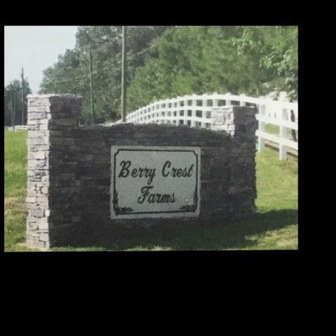 LOT 3B Berry Hill Lane, Arab, AL 35016 (MLS #1103847) :: RE/MAX Unlimited