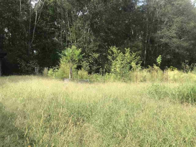 345 County Road 80, Gaylesville, AL 35973 (MLS #1104400) :: Weiss Lake Realty & Appraisals