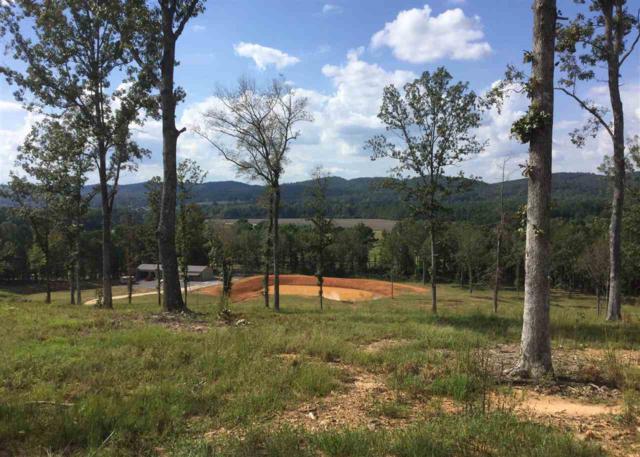 167 County Road 567, Gaylesville, AL 35973 (MLS #1104448) :: Weiss Lake Realty & Appraisals