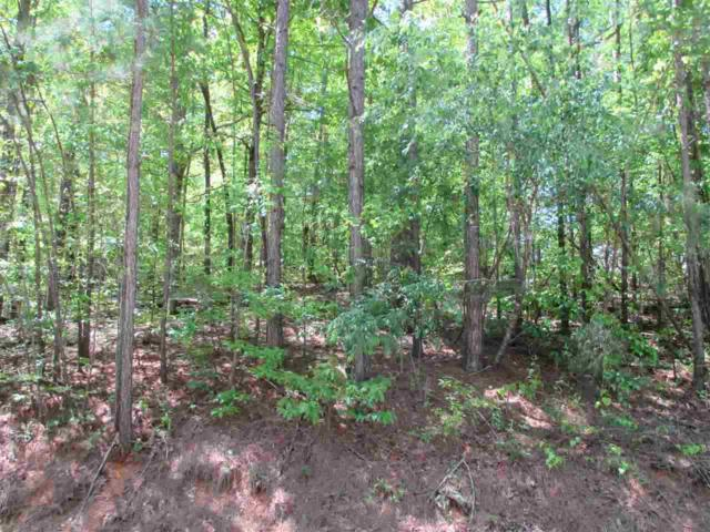 Lot 3 Jane Drive #3, Centre, AL 35960 (MLS #1104537) :: Capstone Realty