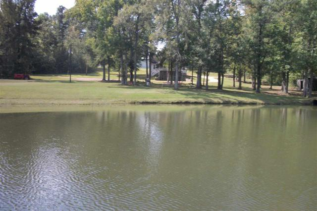 12325 N Us Highway 411, Centre, AL 35960 (MLS #1104642) :: Weiss Lake Realty & Appraisals