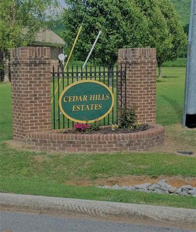 0 Cedar Trace Drive, Hartselle, AL 35640 (MLS #1104982) :: RE/MAX Alliance