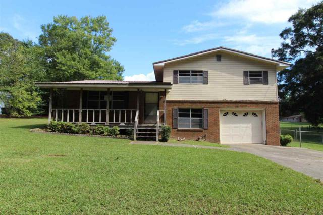 1645 Shelby Drive, Southside, AL 35907 (MLS #1105113) :: Amanda Howard Sotheby's International Realty