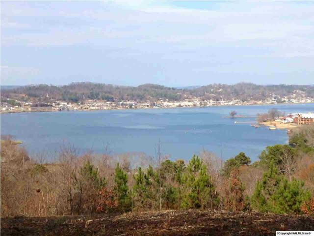 Woodvue Road, Guntersville, AL 35976 (MLS #1105138) :: Weiss Lake Realty & Appraisals