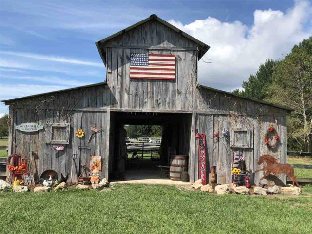 810 County Road 567, Gaylesville, AL 35973 (MLS #1105172) :: Weiss Lake Realty & Appraisals