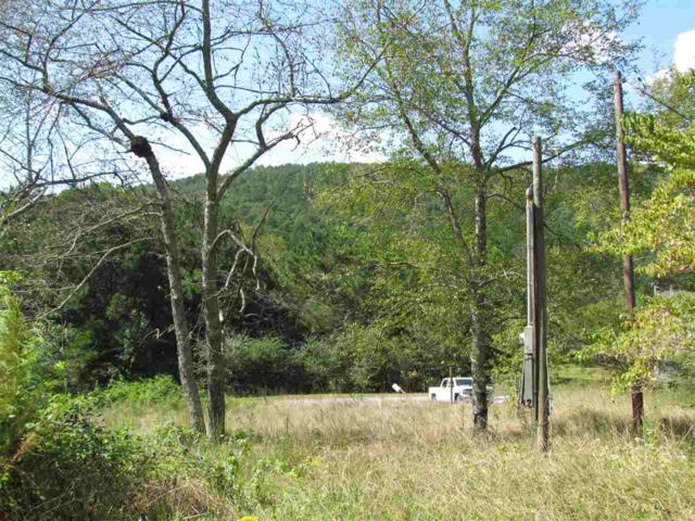 4310 County Road 56, Gaylesville, AL 35973 (MLS #1105333) :: Weiss Lake Realty & Appraisals