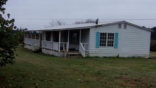 1233 County Road 194, Henagar, AL 35988 (MLS #1106034) :: Amanda Howard Sotheby's International Realty