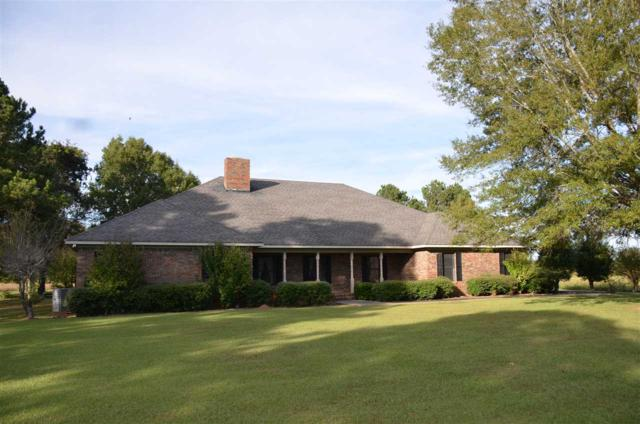 5235 W Highway 55, Danville, AL 35619 (MLS #1106102) :: RE/MAX Alliance