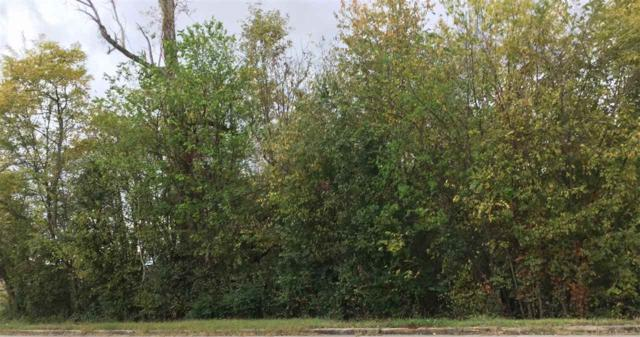 130 Thunderbird Drive, Harvest, AL 35749 (MLS #1106312) :: Amanda Howard Sotheby's International Realty