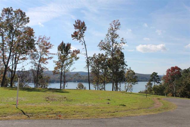 95 Fall Creek Drive, Guntersville, AL 35976 (MLS #1106414) :: Capstone Realty