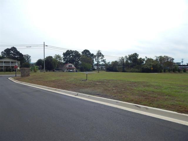 1 Natures Way, Guntersville, AL 35976 (MLS #1106446) :: Legend Realty