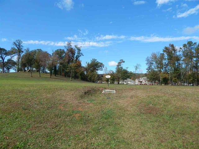 34 Georgia Mountain Road, Guntersville, AL 35976 (MLS #1106483) :: Legend Realty