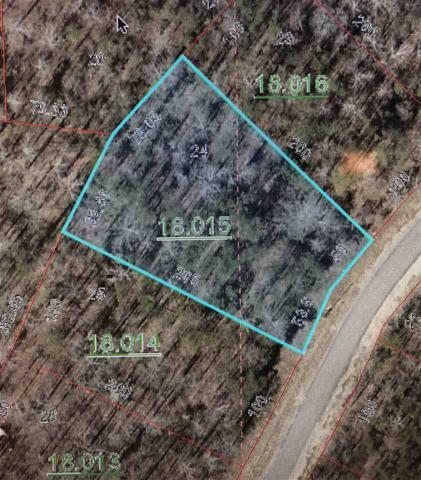County Road 667, Cedar Bluff, AL 35959 (MLS #1106868) :: Intero Real Estate Services Huntsville