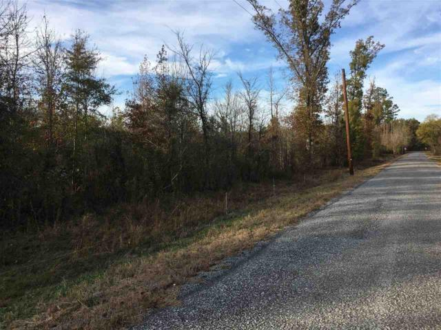 Rocky Ford Road, Piedmont, AL 36272 (MLS #1107141) :: Eric Cady Real Estate