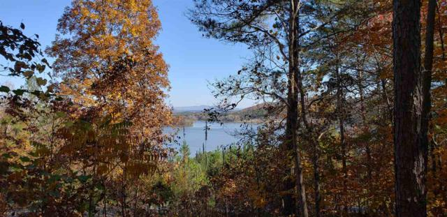 200 County Road 592, Leesburg, AL 35983 (MLS #1107430) :: Weiss Lake Realty & Appraisals