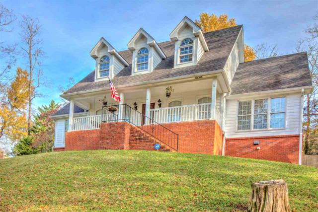 113 Rachel Drive, Huntsville, AL 35806 (MLS #1107624) :: Capstone Realty