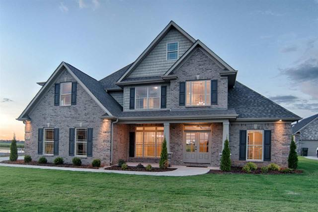 115 Alex Trace Drive, Meridianville, AL 35759 (MLS #1107801) :: Capstone Realty