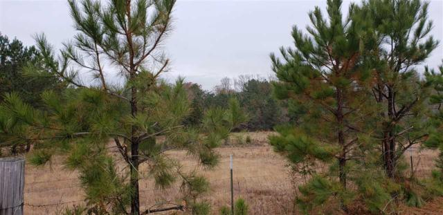6 County Road 146, Leesburg, AL 35983 (MLS #1108290) :: Weiss Lake Realty & Appraisals
