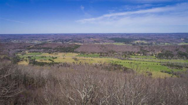 Lot 16 County Road 89, Mentone, AL 35984 (MLS #1108339) :: Intero Real Estate Services Huntsville