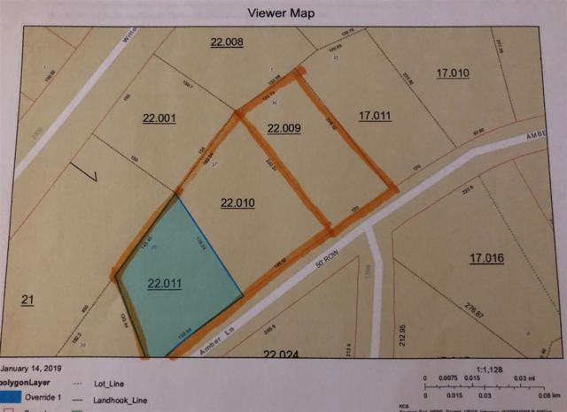 00 Amber Lane, Guntersville, AL 35976 (MLS #1109976) :: Capstone Realty