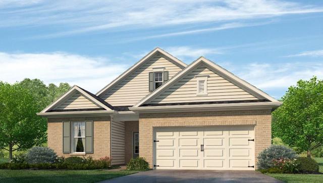 262 Caudle Drive, Madison, AL 35756 (MLS #1109982) :: Capstone Realty