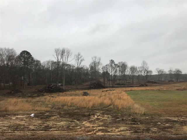 Alabama Highway 205, Boaz, AL 35957 (MLS #1110497) :: Eric Cady Real Estate