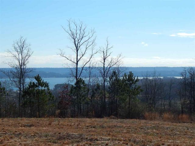 Legendary Drive, Guntersville, AL 35976 (MLS #1110534) :: Eric Cady Real Estate
