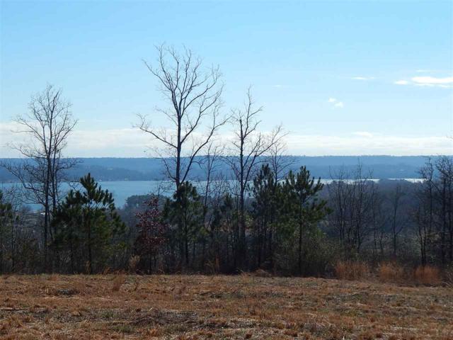 Legendary Drive, Guntersville, AL 35976 (MLS #1110534) :: Eric Cady Real Estate