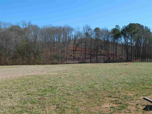 5 Browns Valley Road, Guntersville, AL 35976 (MLS #1110540) :: Eric Cady Real Estate