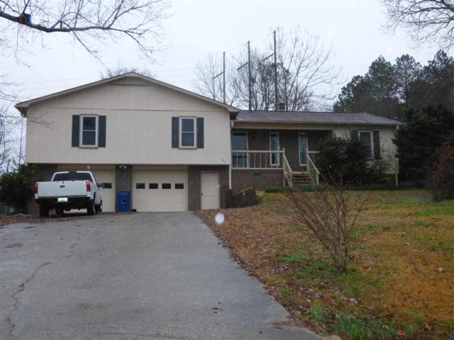 304 Mountain Lake Circle, Rainbow City, AL 35906 (MLS #1110961) :: Legend Realty